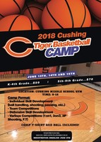 Tiger Basketball Camp