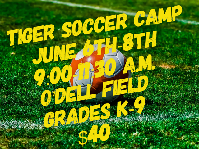 Tiger Soccer Camp